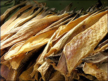 Dried Stock Fish